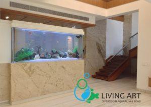 """""""Acrylic Aquarium Manufacturing in India"""""""
