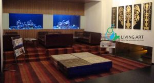 """Fish Tank in ECR, Chennai"""