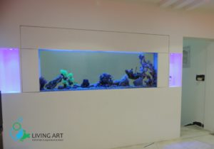 """Fish Tank for Hospital in India"""
